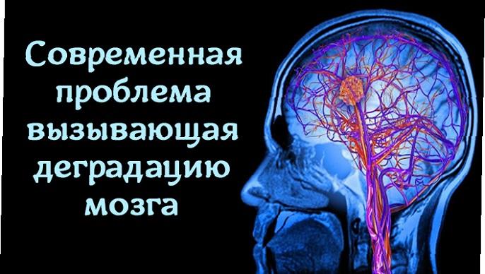 Деградация мозга — читать нужно ВСЕМ!